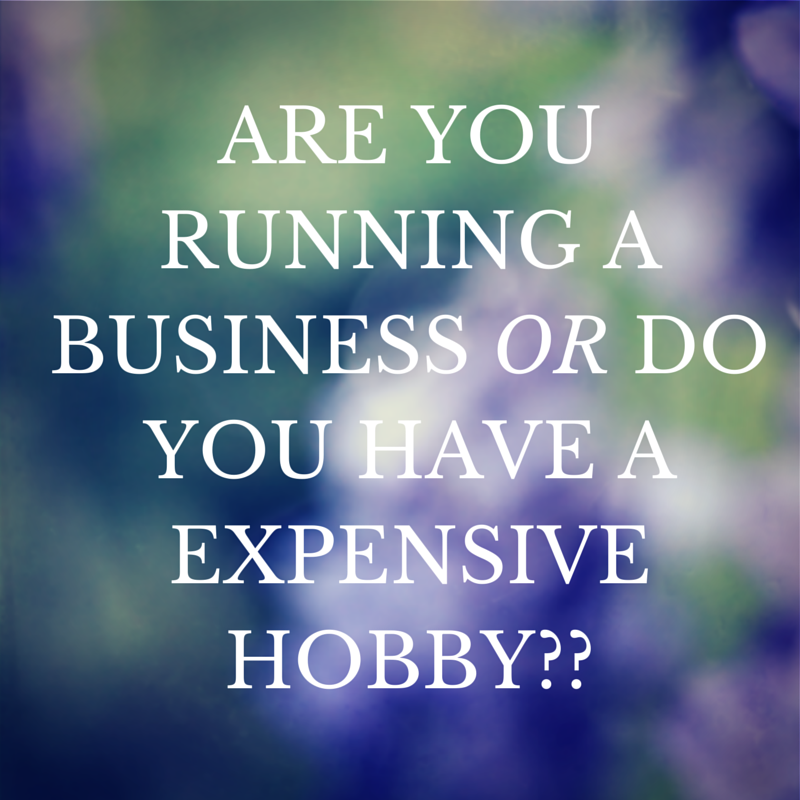 Is it a business or an expensive hobby? by Anne Schmidt