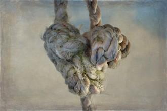 rope-667267_1280