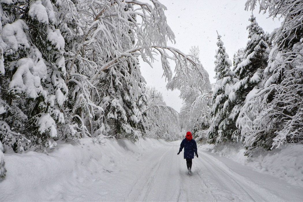 Learning to Embrace and Celebrate Winter -Is it possible?