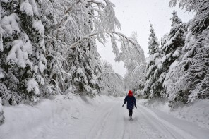 Learning to Embrace and Celebrate Winter – Is it Possible?